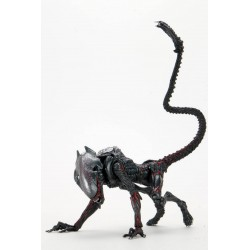 Figura Aliens: Kenner Tribute Cougar Alien Neca