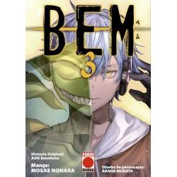 BEM 3