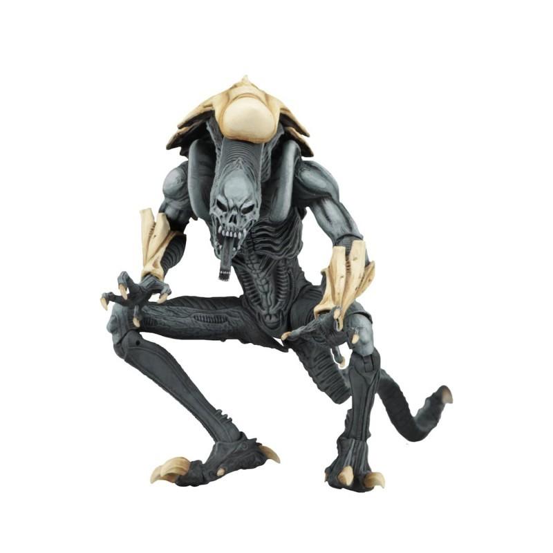 Figura Alien Chrysalis Alien Vs. Predator Neca