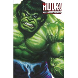 The Hulk Poder Desencadenado Marvel Limited Edition Panini