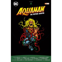 Aquaman de Peter David 3