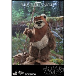Figura Princesa Leia y Wicket El Retorno del Jedi Hot Toys Star Wars