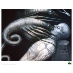 Alien Set de 5 Litografias