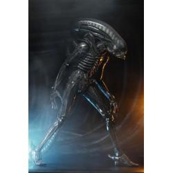 Figura Alien Ultimate 40th...