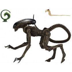 Figura Alien 3 Ultimate Dog...