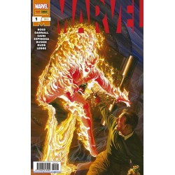 Marvel 1 alex ross comprar panini